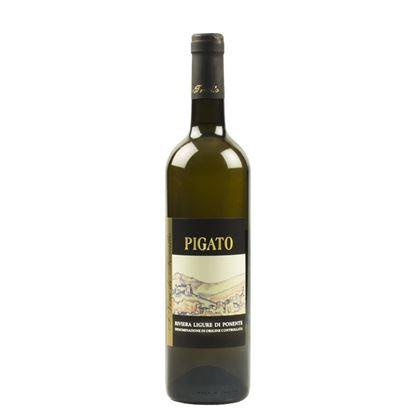 Immagine di Vino Pigato Riviera Ligure di Ponente D.O.C.